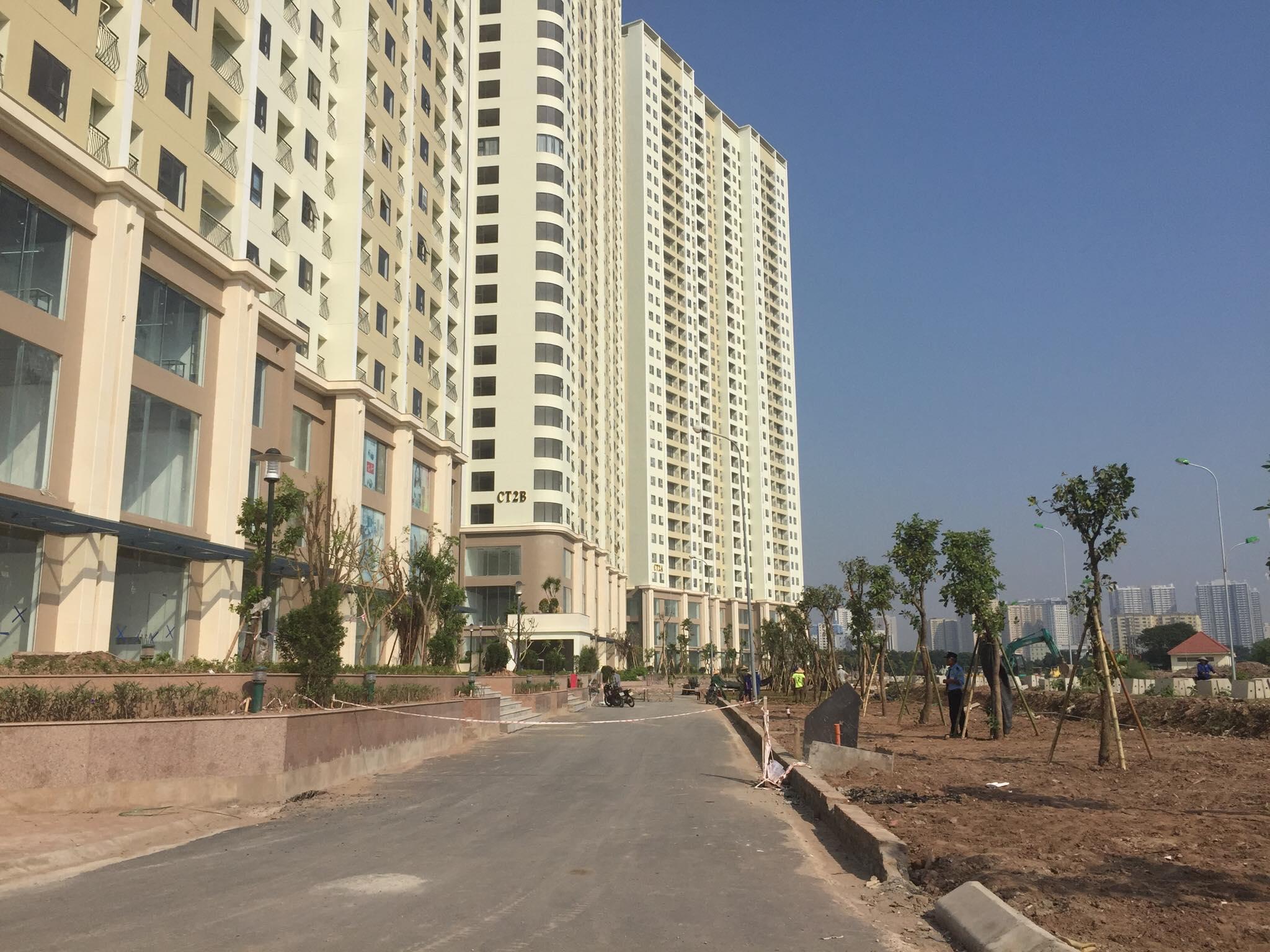 Dải vườn hoa quanh dự án đang được trồng thêm rất nhiều cây xanh.