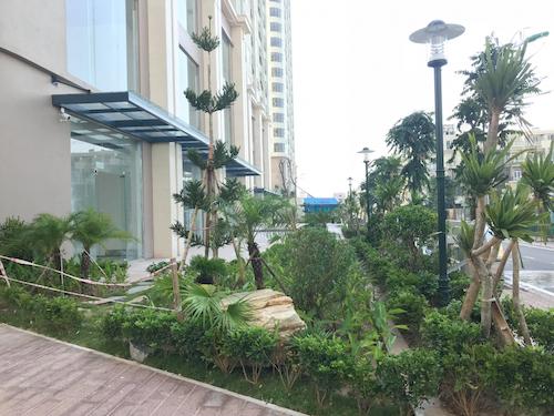 Rất nhiều cây xanh, các loại hoa nở theo mùa được trồng bao quanh dự án. Điểm ấn tượng nhất là khu vực sảnh tầng 1 và các khoảng không giữa hai tòa nhà, chủ đầu tư đã thiết kế các khu công viên nhỏ và trồng rất nhiều các loại cây hoa tạo cảm giác bình yên, thư thái.