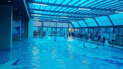 Gelexia Riverside sở hữu bể bơi 4 mùa chuẩn nghỉ dưỡng.